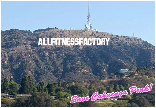 allfitnessfactory.de hollywood