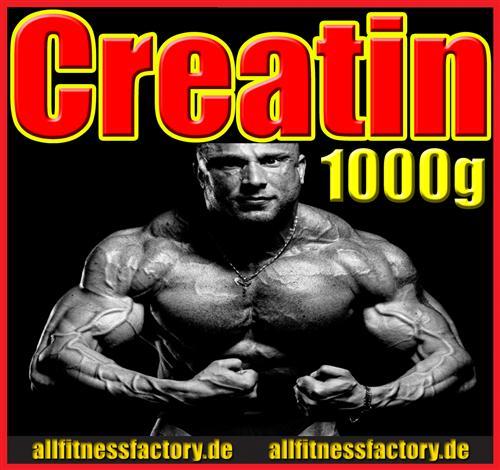 1kg Creatin Monohydrat jetzt