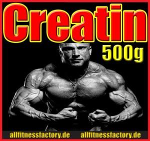 AFF_Creatin_500_web
