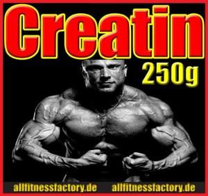 AFF_Creatin_250_web