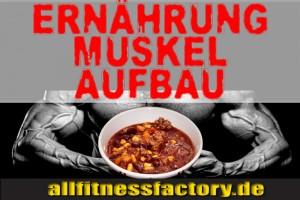 ErnährungsplanMuskelaufbau
