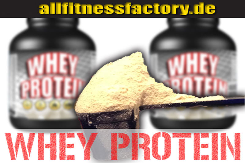 Whey Protein Muskelaufbau