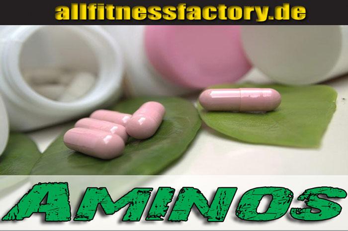 Aminosäuren jetzt