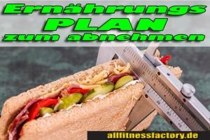 Ernährungsplan-zum-Abnehmen-1a