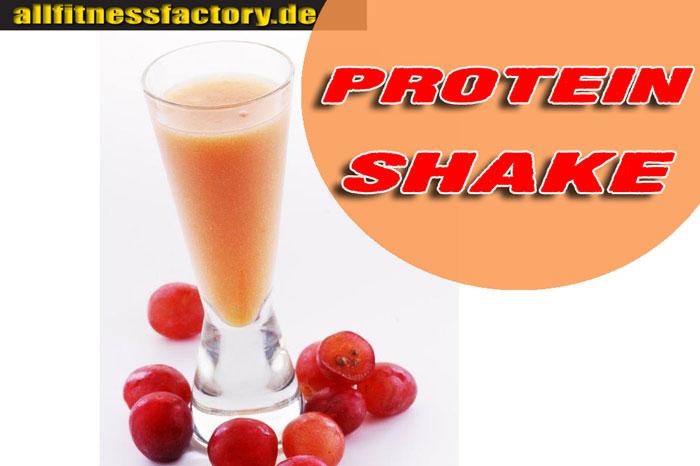 Protein Shake Test 2