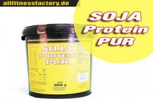 Sojaprotein-Wasserextraktion