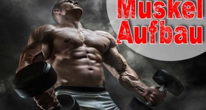 MuskelaufbauErnährung jetzt