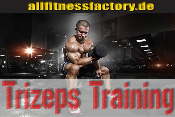 Trizeps Training