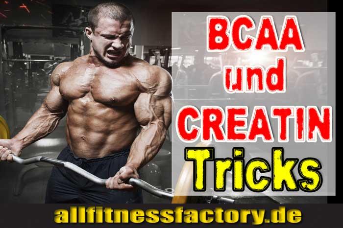 BCAA und Creatin