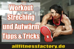 Das-Muskel-Workout