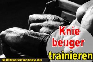 Kniebeuger-trainieren