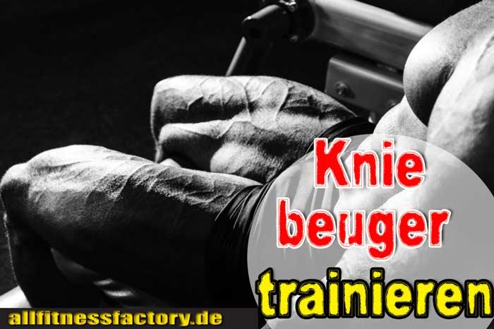 Kniebeuger trainieren