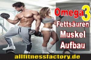 omega3muskelaufbau