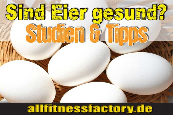 Wie viel Eiweiß hat ein Ei