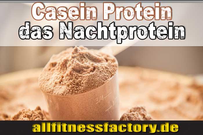 Casein-Protein