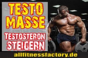 testosteronsteigern