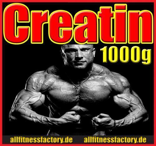 1kg hochreines 100% Creatin Monohydrat Kreatin WOW! NEU