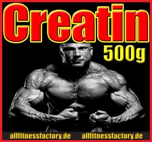 500g reines Creatin Monohydrat Qualitäts Kreatin Pulver