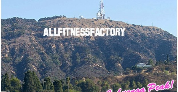 allfitnessfactory.de hollywood share it