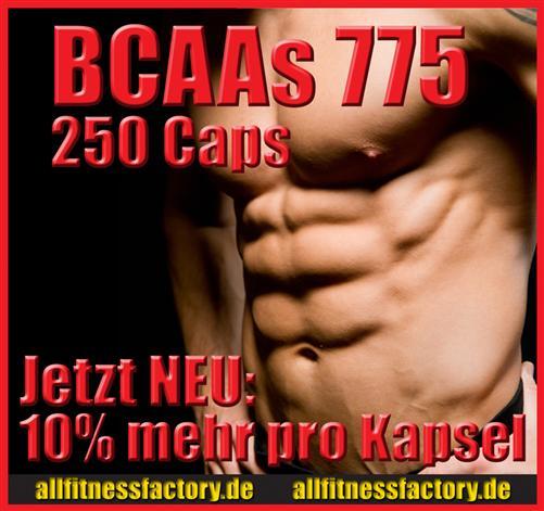 BCAA AMINO Kapseln 775mg 250 Stück