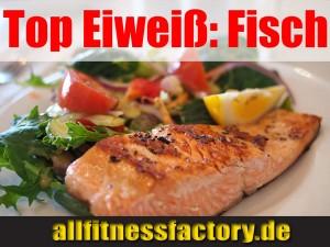 Top Eiweiss Fisch
