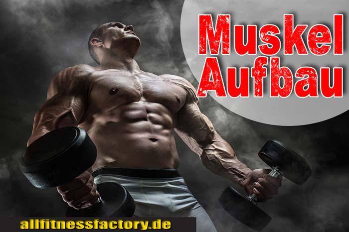MuskelaufbauErnährung