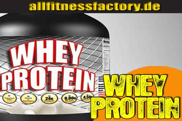 was bedeutet whey protein