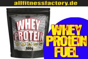 whey protein kalorien