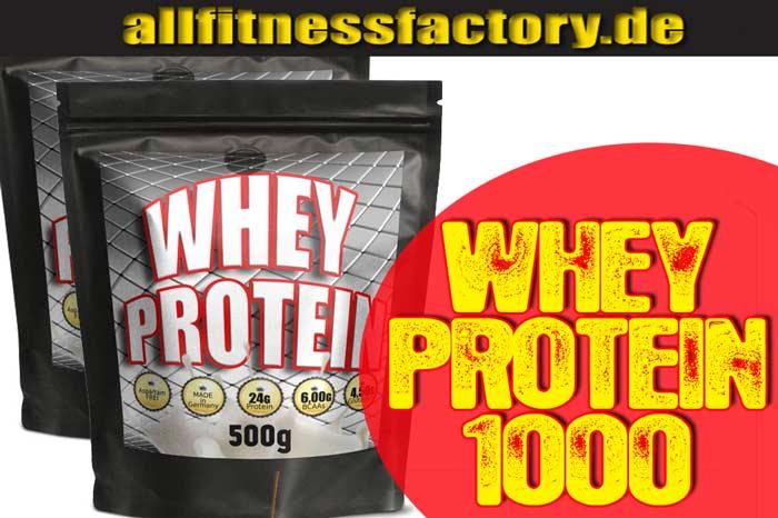 Whey Protein Bcaa