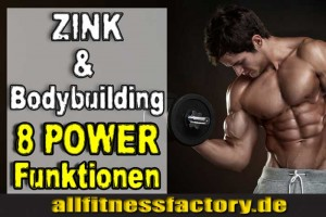 zink bodybuilding
