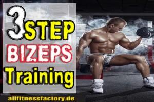 bizeps training wiederholungen