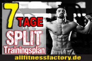 Trainingsplan Bodybuilding
